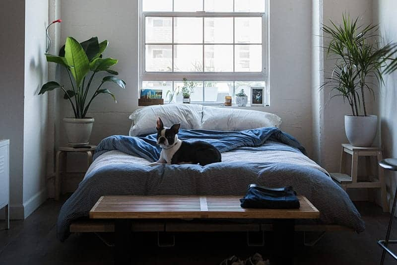 Raise Your Bed Height With Two Simple Hacks