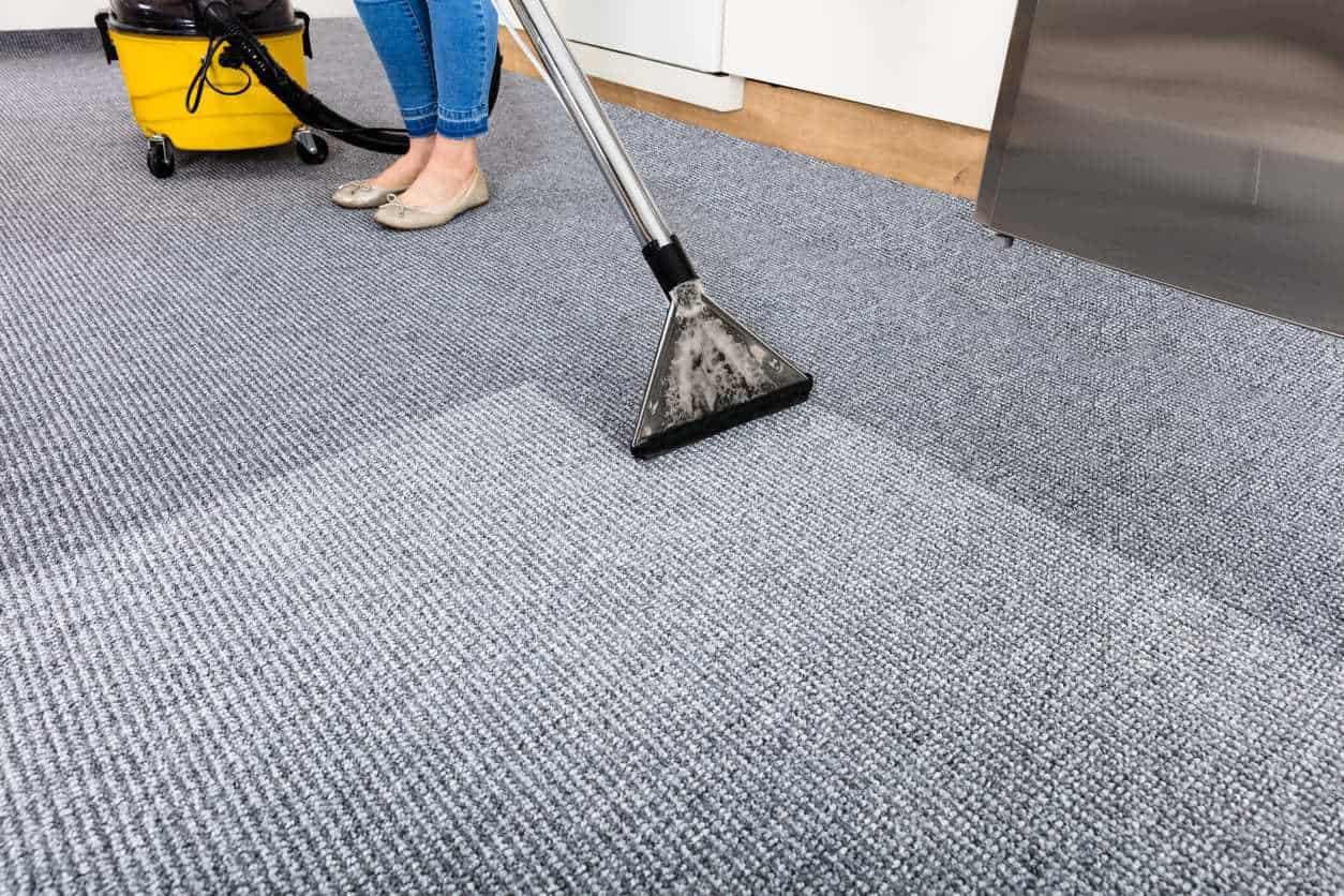 dry rug 1