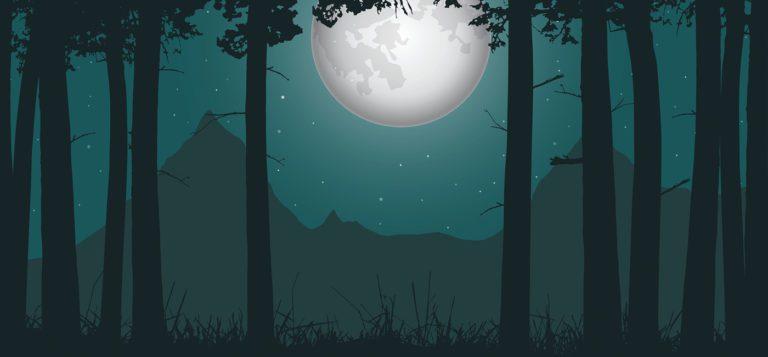 Sleep Mysteries