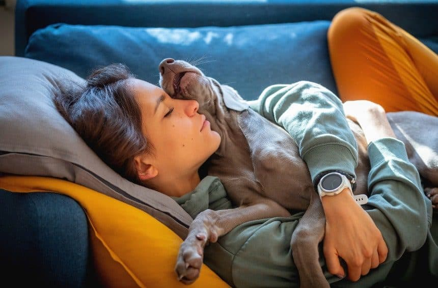 A puppy lying on top of young woman its owner on the sofa